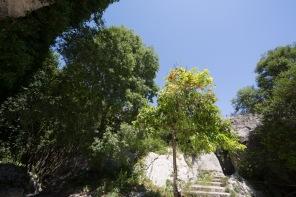 Jardins du Parc archéologique de Neapolis, Syracuse, photo Serge Briez, Cap médiations 2014