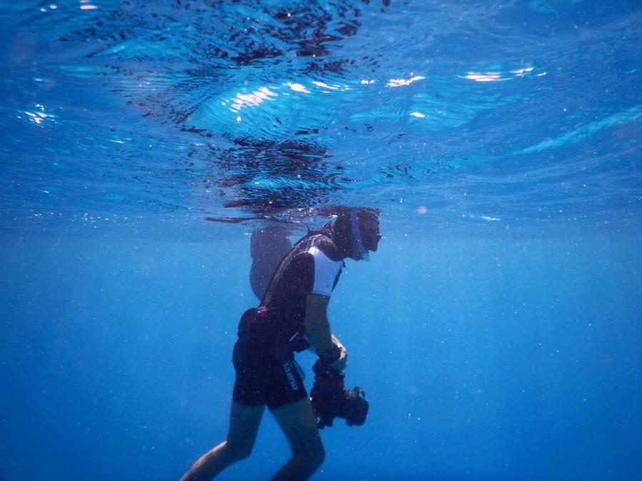 Eric De May, Nager avec les dauphins, Hurghada, Mer Rouge Photo Serge Briez©capmediations2015