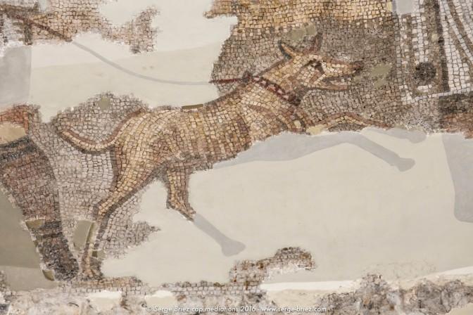 Villa romaine de Centcelles, Museu Nacional Arqueològic de Tarragona – Centcelles