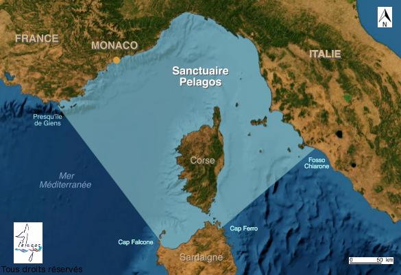 Carte du sanctuaire Pelagos entre Corse, France, Italie et Sardaigne